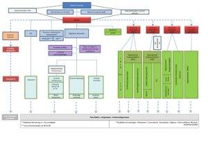 Organogram matrixorganisatie