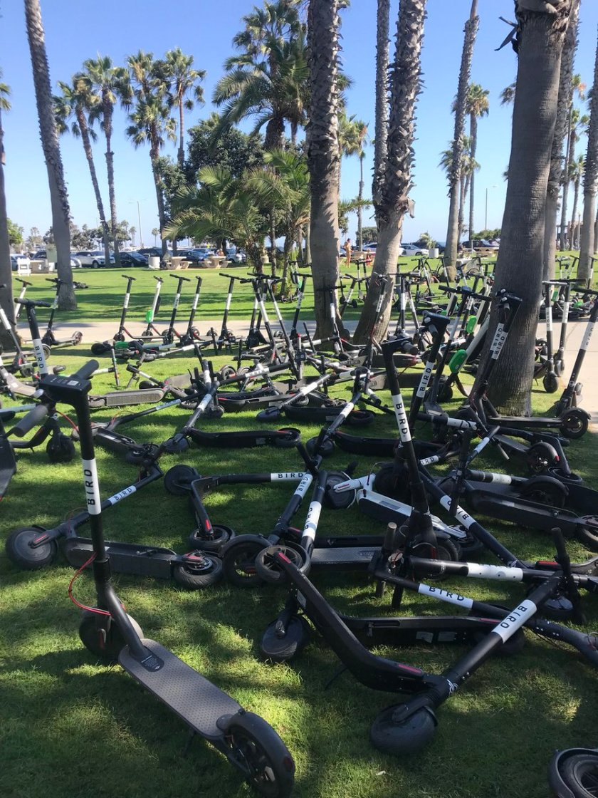 Electric scooters invaded Santa Monica CA at August 7, 2018 - Photo Madeline Esking on Twitter
